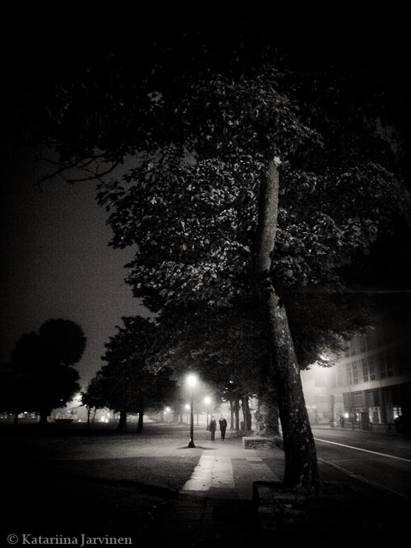 Brighton at night, misty park, The Level