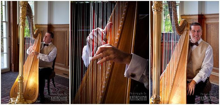 harpist, Andrew Ballantyne